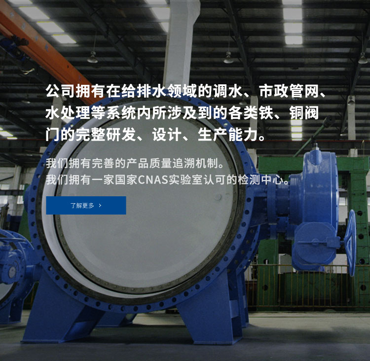 http://dafmgroup.yesshang.cn/product.html